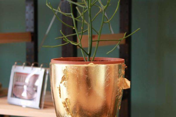 vergoldeter Blumenübertopf - Goldcreartiv